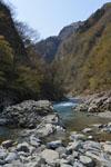 新潟の川の画像001