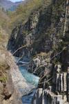 新潟の川の画像005