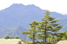 瓶ヶ森の山の画像031