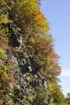 瓶ヶ森の紅葉の画像014