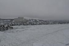 網走の流氷の画像003