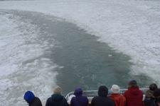 網走の流氷の画像008