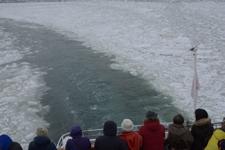 網走の流氷の画像009
