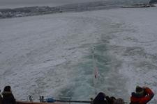 網走の流氷の画像010