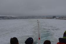網走の流氷の画像011