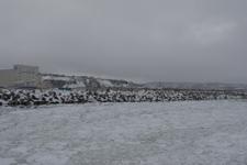 網走の流氷の画像014