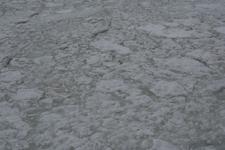 網走の流氷の画像015