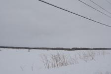 中標津の雪原の画像007