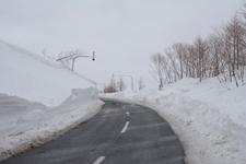 中標津の雪の壁の画像001