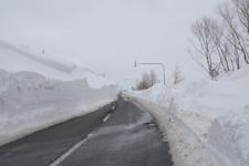 中標津の雪の壁の画像002