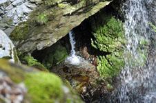 轟九十九滝の画像006