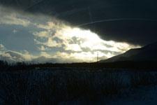 雪に埋もれた畑の画像003