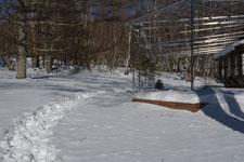 八ヶ岳の雪