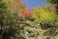 高の瀬渓の紅葉の画像005