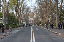 成蹊大学の正門の画像002
