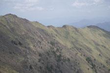 笹ヶ峰の冬山の画像007