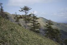 笹ヶ峰の冬山の画像009