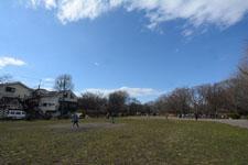井の頭恩賜公園の風景の画像002