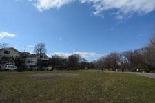 井の頭恩賜公園の風景の画像003
