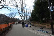 井の頭恩賜公園の風景の画像004