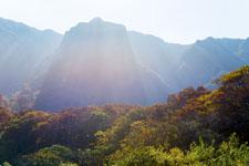 大山の紅葉の画像007