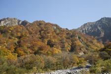 大山の紅葉の画像009