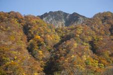 大山の紅葉の画像010