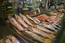 釧路市の魚市場の画像002