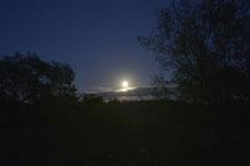 釧路湿原にかかる月の画像006