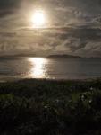 海に沈む夕日とハマヒルガオ
