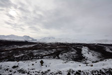 デナリ国立公園の山の画像004