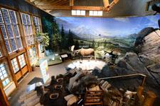 デナリ国立公園の博物館の画像002