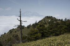 瓶ヶ森の山の画像012