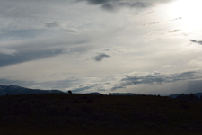 イエローストーン国立公園のアメリカバイソンの画像026