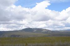 イエローストーン国立公園の平原