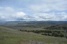 イエローストーン国立公園の草原の画像004