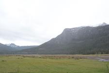 イエローストーン国立公園の湿原の画像001