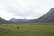 イエローストーン国立公園の湿原の画像002