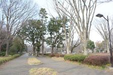 小金井公園の画像001
