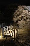 彦根城のお堀と満開の夜桜の画像010