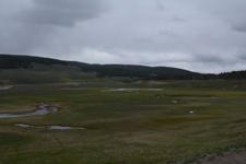 イエローストーン国立公園の湿原の画像005