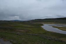 イエローストーン国立公園の湿原の画像006