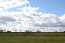 中標津の草原と雲の画像001