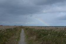 野付半島の草原と虹の画像001