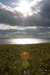 野付半島の海の画像009