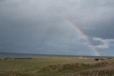野付半島の草原と虹の画像002