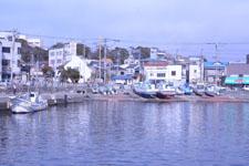 三崎の海の画像004