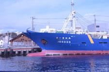 三崎の海の画像007