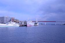 三崎の海の画像008