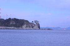 三崎の海の画像036